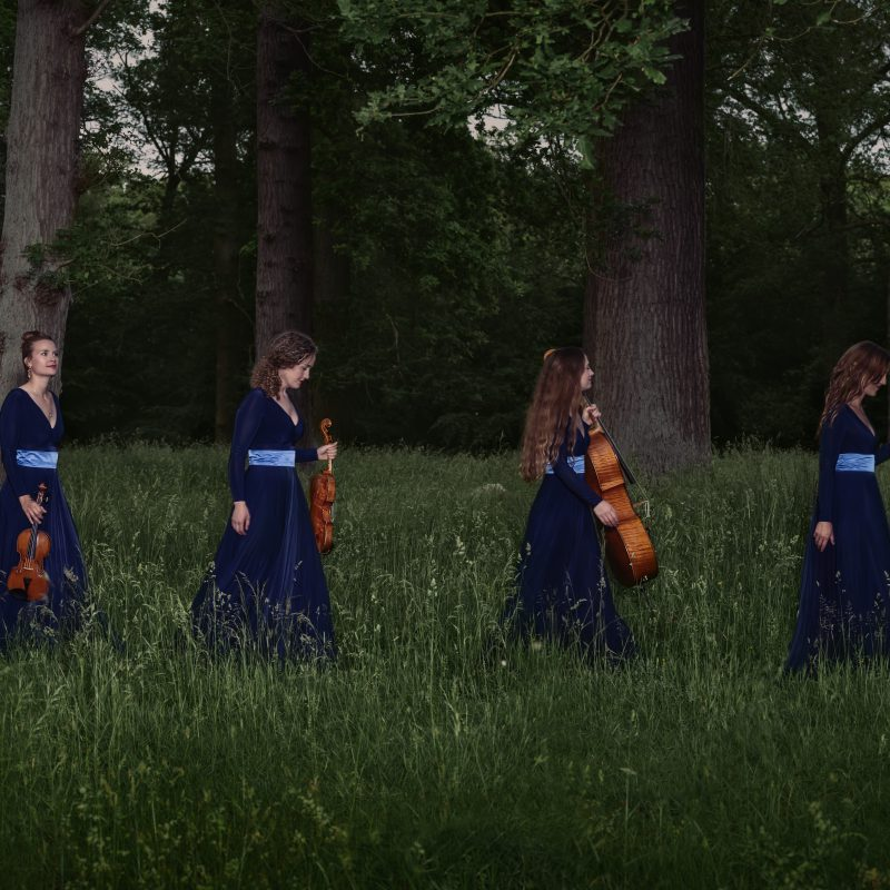 Nightingale String Quartet 05 by Julia Severinsen
