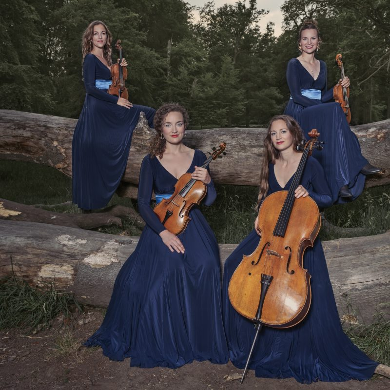 Nightingale String Quartet 06 by Julia Severinsen