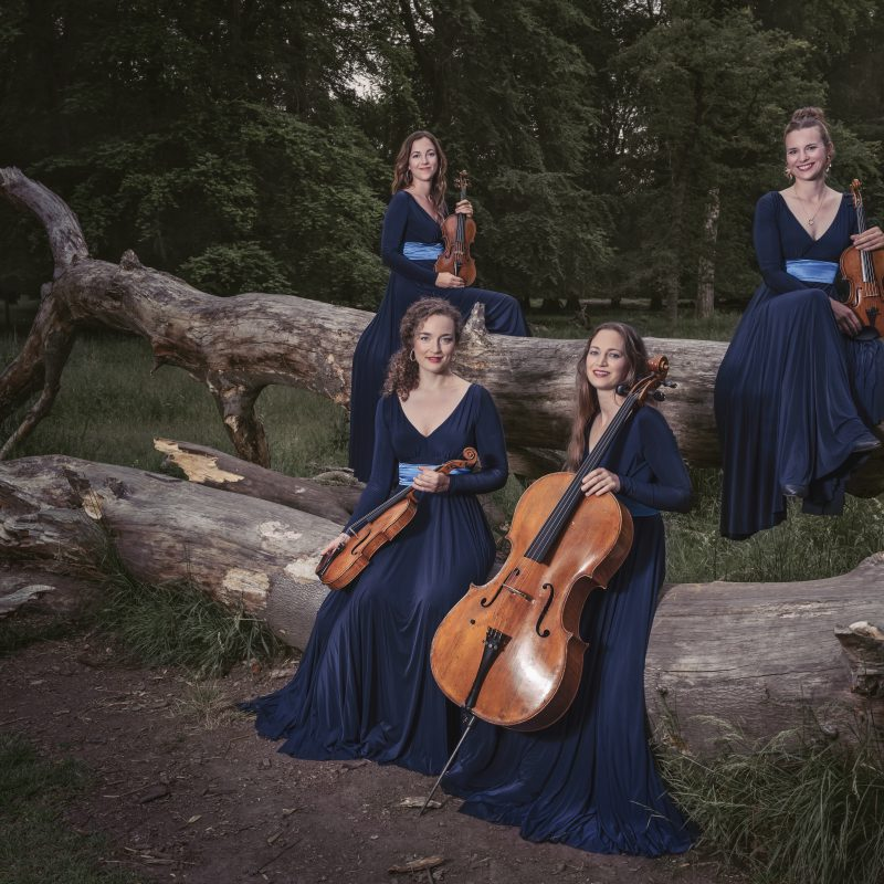 Nightingale String Quartet 07 by Julia Severinsen