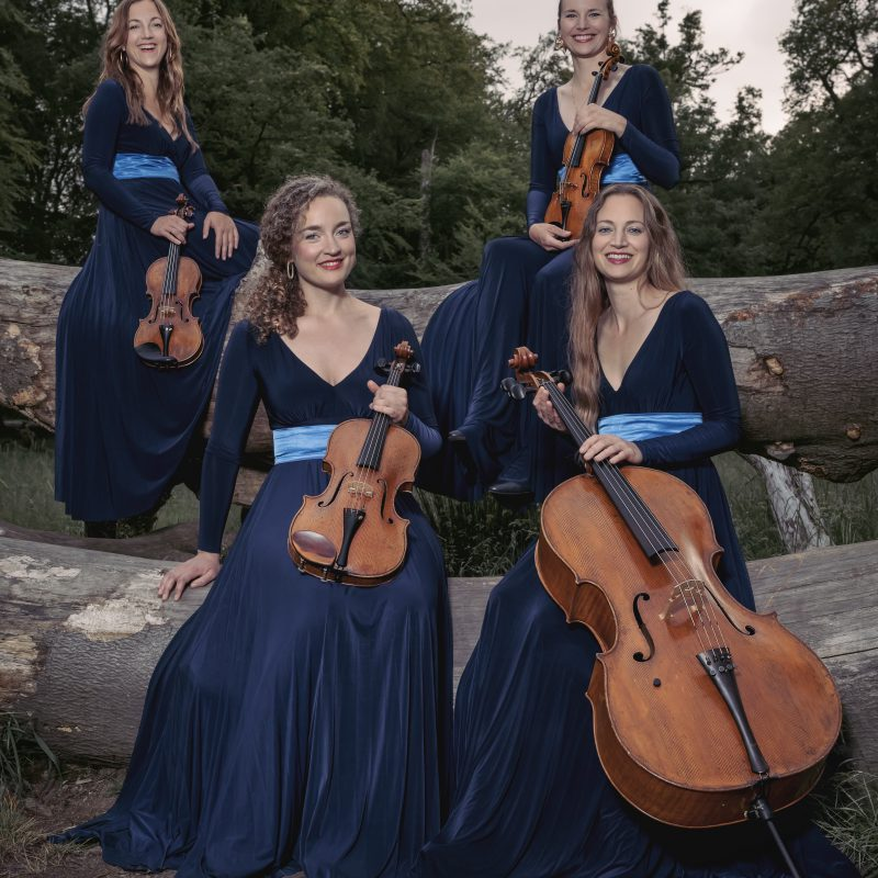 Nightingale String Quartet 08 by Julia Severinsen