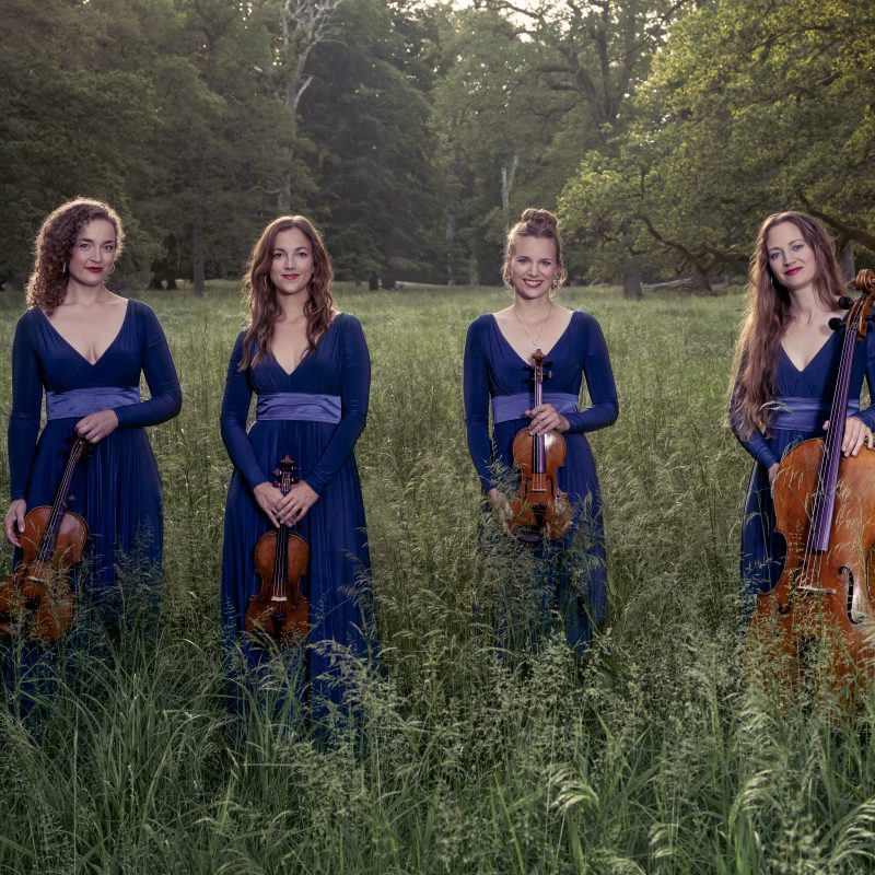 Nightingale String Quartet 09 by Julia Severinsen