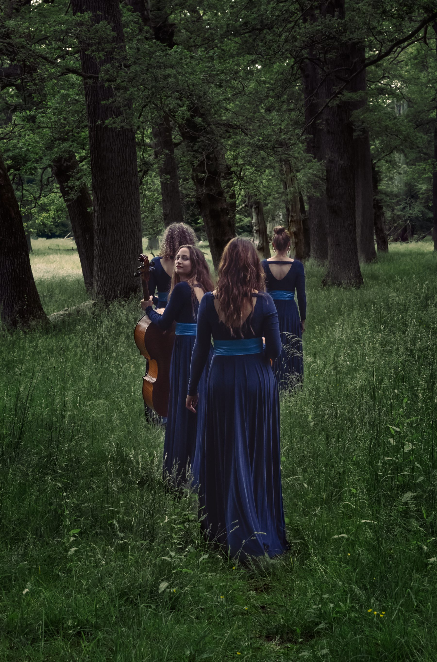 Nightingale String Quartet 10 by Julia Severinsen